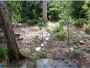 Garden Project Before amp After ARC Services Strata