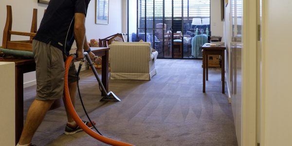 ARC carpet cleaning residential landscape