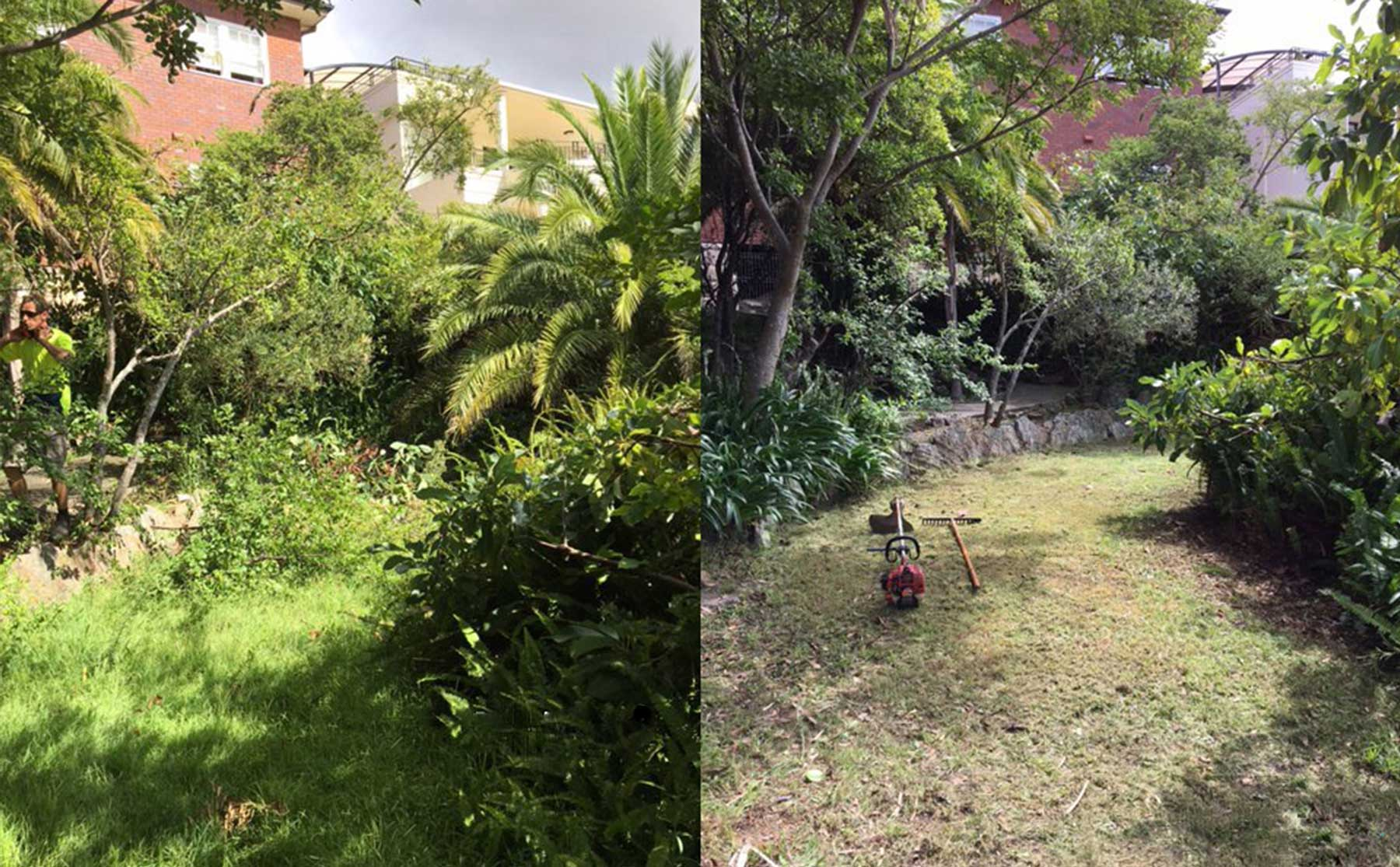 ARC Services Gardening Before and After